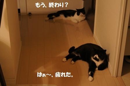 休憩ジャパン