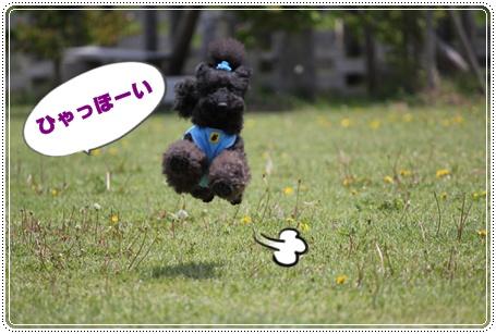 004_20100515232109.jpg