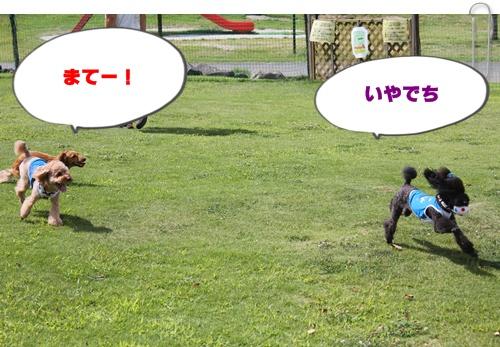 004_20100913213822.jpg