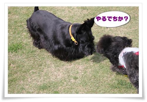 008_20101010220724.jpg