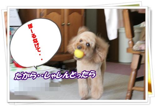 018_20100614215932.jpg