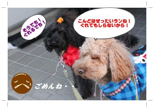 028_20110109194301.jpg