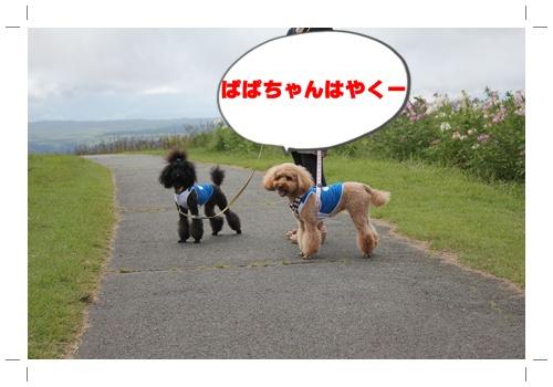 056_20100915220421.jpg