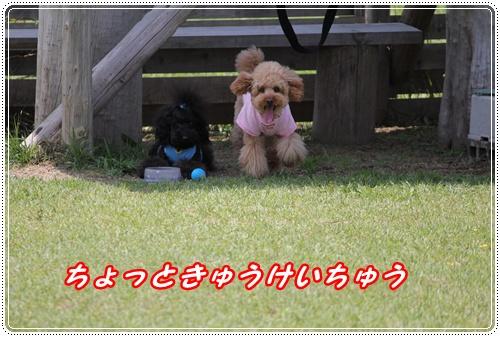 057_20100515232236.jpg