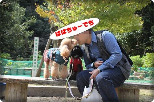 071_20101017222727.jpg