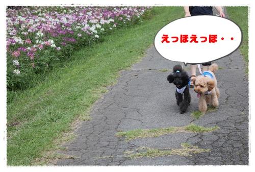 108_20100915221319.jpg
