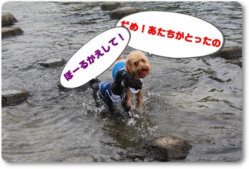 162_20100918221416.jpg