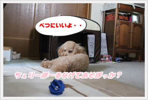 1_20100808210542.jpg