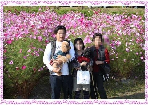 221_20101021203254.jpg