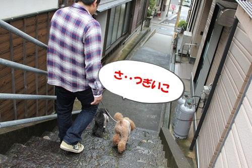 7483_20111122211210.jpg