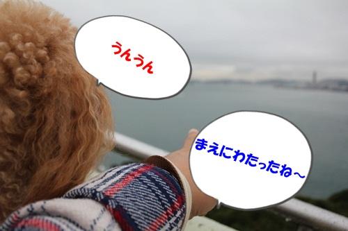 IMG_7457.jpg