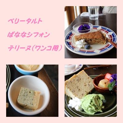 cats_20120226194004.jpg