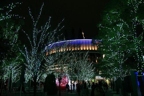 20101215-5.jpg