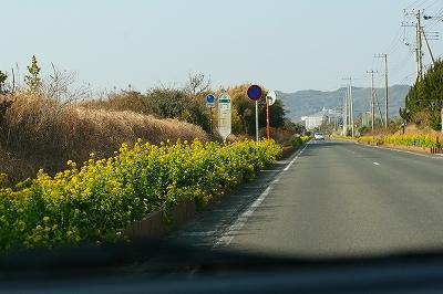 20110208-2.jpg