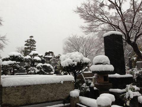 IMG_1713yuki.jpg