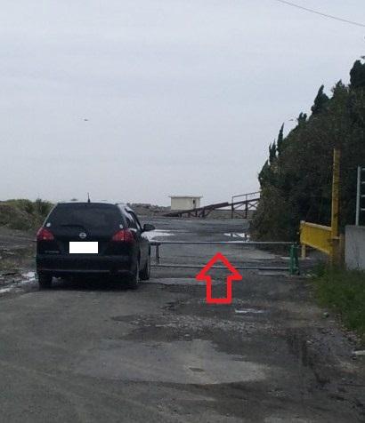 yosihanaumetatechi.jpg
