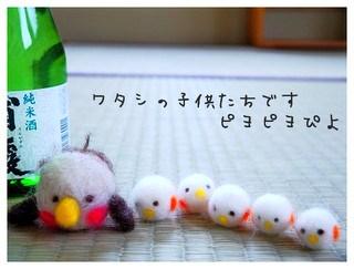 10_20110221093319.jpg