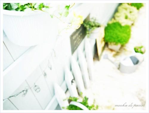 12_20110804111138.jpg