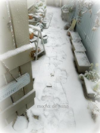 14_20120229105057.jpg