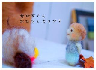 15_20110221093346.jpg