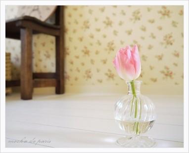 4_20110131095307.jpg