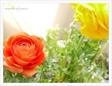 4_20110307120452.jpg