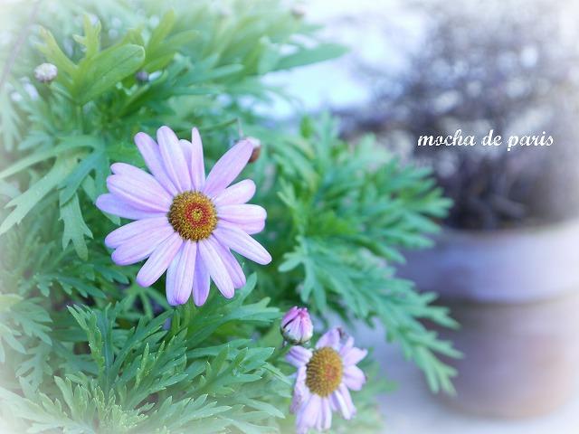 4_20120127094118.jpg