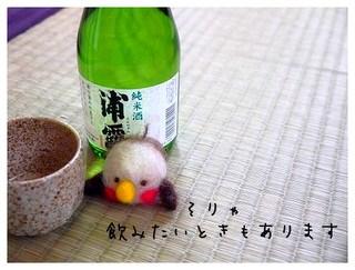 5_20110221093252.jpg