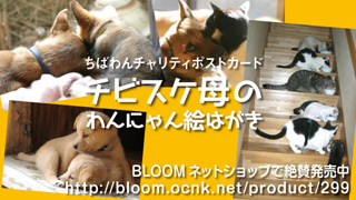 postcard_320x180b_201311270152451da.jpg