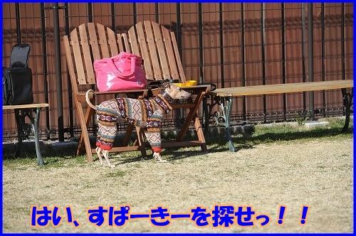 DSC_5078.jpg