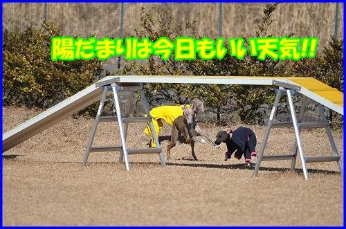 DSC_5332.jpg