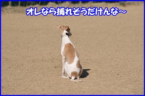 DSC_5758.jpg