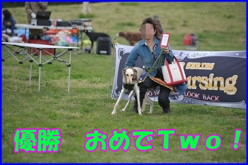 DSC_6785_20130417223949.jpg