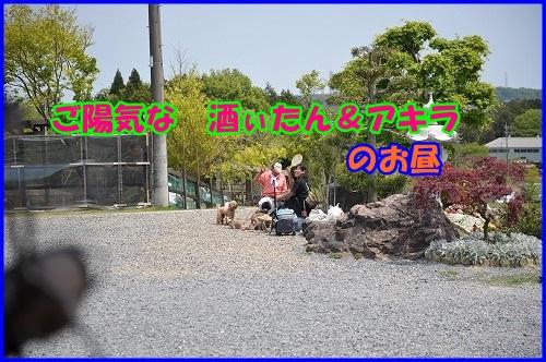 DSC_7578.jpg