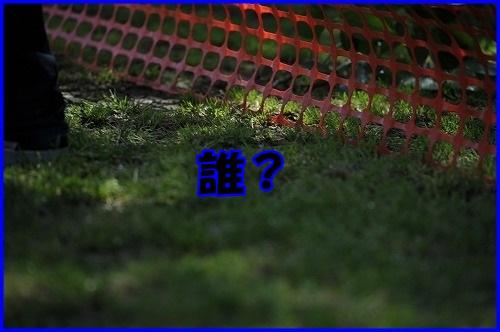 DSC_7721_20130516200916.jpg