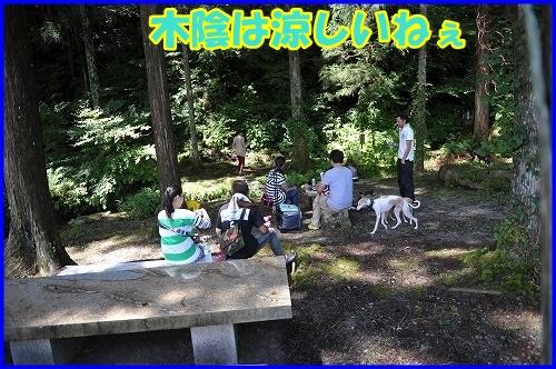 DSC_9102_20130718225343.jpg