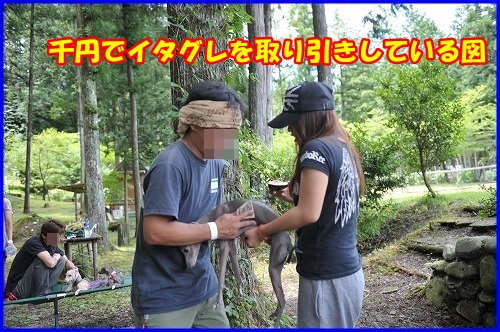 DSC_9169_20130718230338.jpg