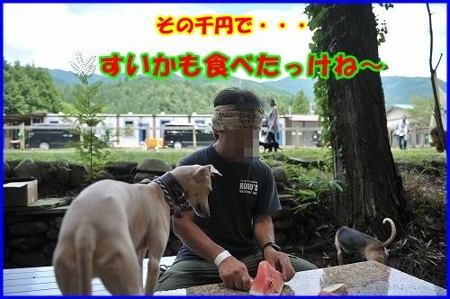 DSC_9182_20130718232219.jpg