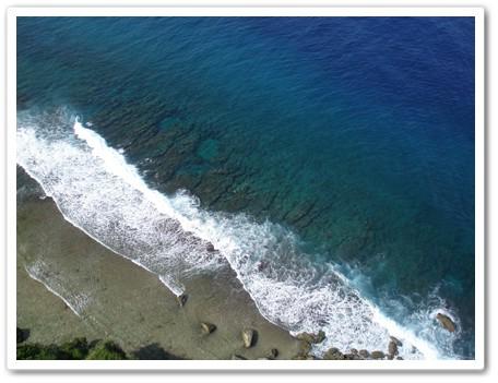 珊瑚がいっぱい