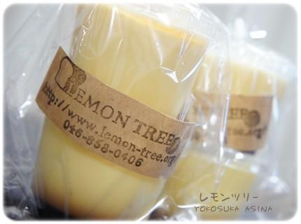 レモンツリーのプリン