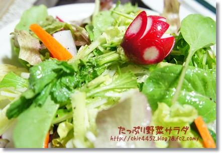 新鮮野菜サラダ