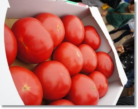 トマト一箱