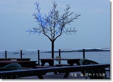 テラスの木に点灯