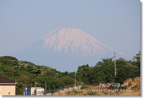 富士山も見えたね