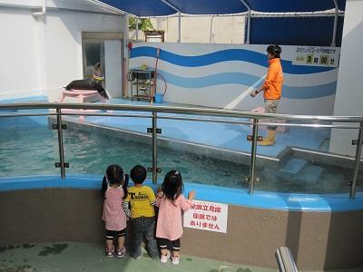 蒲郡水族館