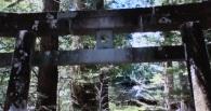 二荒山神社5