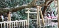 鹿島神社6