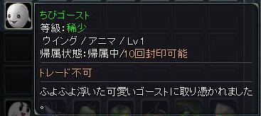 10110910.jpg
