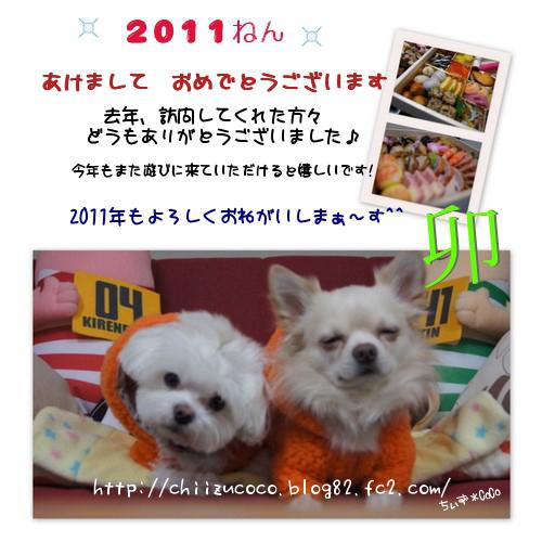 2011-ごあいさつ~