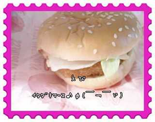 CIMG0008-1_20100304221013.jpg